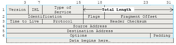 IP header format from RFC