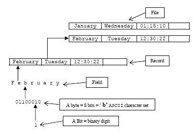 C file I/O data hierarchy